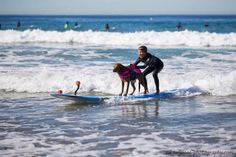 Therapy waves along with a surfing dog dedicated to help the specially abled