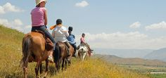 Horse Riding Holidays in Albania. Explore the mountains of Albania on horseback with Wild Frontiers. Riding Holiday, Lord Byron, Group Tours, Albania, Horse Riding, Trek, Bucket, Horses, Explore