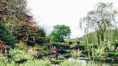 Claude Monet, Vineyard, Gallery, Garden, Plants, Outdoor, Bonjour, Outdoors, Garten