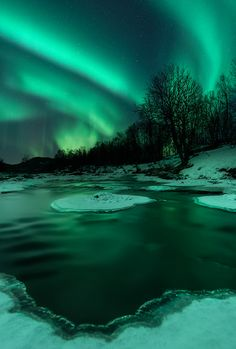 tr3slikes:500px / River Lights by Arild Heitmann