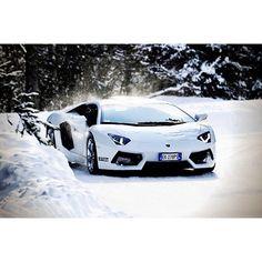Lambo snow