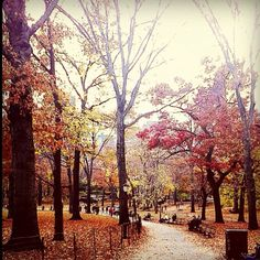 Fall in Central Park. this place me happy :)