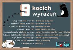 English Phrases, English Words, English Grammar, English Study, English Lessons, Polish Language, Perfect English, Education English, School Notes