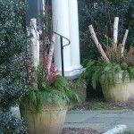 Seasonal Designs @ The Captured Garden