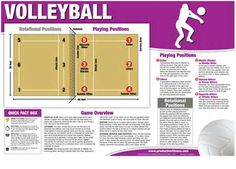 Volleyball Positions - AT&T Yahoo Image Search Results