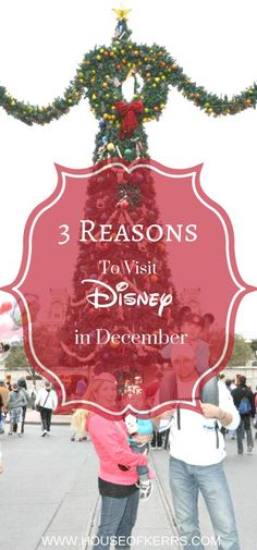 3 Reasons to Visit Walt Disney World in December