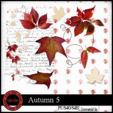 Autumn 5 elements #CUdigitals cudigitals.com cu commercial digital scrap #digiscrap scrapbook graphics