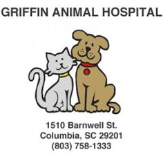 14 Best Veterinary Practices images | Pet clinic, Veterinary