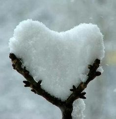 Heart made of snow