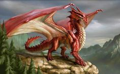 Red-European-Dragon
