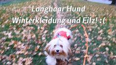 In diesem Video geht es um das Thema Langhaar Hunde im Winter und die damit verbundenen Probleme bei der Fellpflege.Freue mich auf Kommentare und Tips dazu.