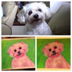 Blue Skies & Apple Pie: Custom Dog Portraits
