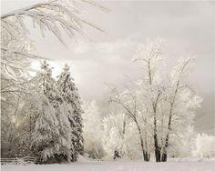 Art Snow Landscape Art Photography 11x14 Fine Art Photograph. $30.00, via Etsy.
