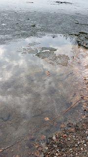 Sadepäivän pisaroita