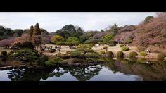 Farm Of Minds: Ai Nihon 愛日本: Hanami in Tokyo