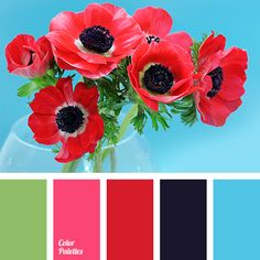 Color Palette by In Color Balance Red Colour Palette, Colour Schemes, Color Combinations, Red Color, Red Pages, Use E Abuse, Color Balance, Design Seeds, Colour Board