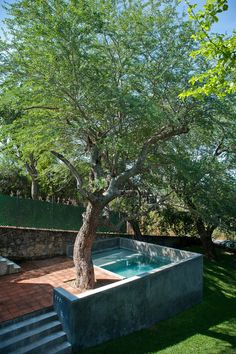 Browse swimming pool designs to get inspiration for your own backyard oasis. Discover pool deck ideas and landscaping options to create your poolside dream. Small Backyard Pools, Natural Swimming Pools, Backyard Pool Designs, Small Pools, Swimming Pools Backyard, Swimming Pool Designs, Backyard Landscaping, Landscaping Ideas, Lap Pools