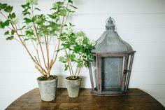 I love the mix of metal and wood that this lantern has. It is sold by The Magnolia Market. For more of my favorite picks this week head over to The Oak Tree at www.theoaktreeny.com
