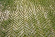 Image result for paved and green driveway