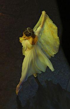 Danse by Марк Олич