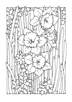 Coloring page narcissus - coloring picture narcissus. Free coloring sheets to print and download. Images for schools and education - teaching materials. Img 27772.