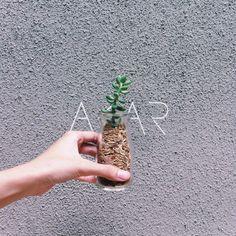 Email : atelierakar@gmail.com Instagram : @akartelier  #furniture #furnish #goodvibe #green #home #decor #succulent #cactus #cacti #homedecor #minimalist #branding #design #product #interior