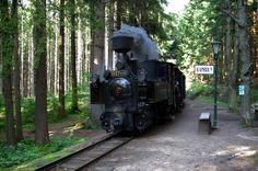 27.8.09 Jindrichuv Hradec to Nove Bystrice Narrow Gauge Steam Train 185 | Flickr - Photo Sharing!