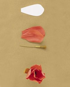 "pt 3/8 - ""Tulip""- Use 6 petals (get the template below), a fringe stamen, and two elongated leaves. Shape petals to cup inward slightly; roll three of them at the widest point to curve strongly inward. Pleat base of each petal; pinch folds in place. Attach heavily cupped petals to stamen; add remaining petals, overlapping slightly. Attach leaves low on stem."