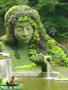 esculturas em arvores vivas - Pesquisa Google
