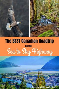 The spectacular Sea to Sky Highway in British Columbia is a roadtrip lover's dream come true, with perfect photography spots, things to do and hiking trails. Squamish is a great stop for the Chief, the Sea to Sky Gondola and beautiful waterfalls. Vancouver Island, Vancouver Travel, Usa Travel, Solo Travel, Columbia Travel, Road Trip Packing, Road Trip Hacks, Road Trips, Great Vacations