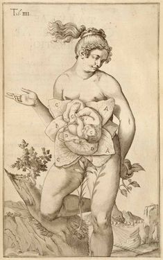 Female anatomical history, 17th century engraving from Casserio's theatrum…