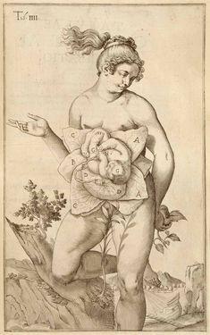 De formato foetu by Giulio Casserio and Odoardo Fialetti  1627