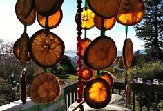 Natural bird feeders everyone can do. http://www.apartmenttherapy.com/easy-peezy-natural-bird-feeders-roundup-165357?image_id=3202641