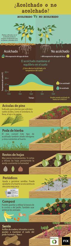 Beneficios que aporta un buen acolchado protegiendo a las raíces de nuestras plantas del frío en invierno y conservando la humedad en verano, además de aportar nutrientes a la tierra y dificultar el crecimiento de malas hierbas.Más información en: http://blog.portaljardin.com/2016/01/acolchado-grafico.html