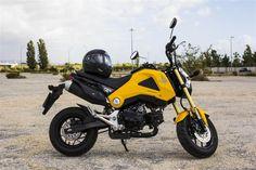 Honda MSX 125: Bumblebee