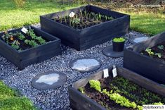Grey Gardens, Farm Gardens, Outdoor Gardens, Raised Bed Garden Design, Greenhouse Gardening, Gnome Garden, Edible Garden, Balcony Garden, Patio Design