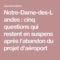Notre-Dame-des-Landes : cinq questions qui restent en suspens après l'abandon du projet d'aéroport