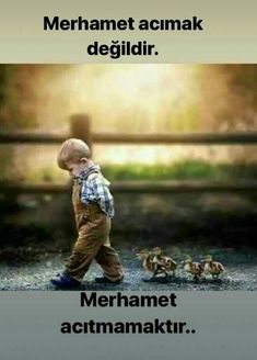 Mercy, not pity. Mercy is not to hurt. Smart Quotes, Best Quotes, Good Sentences, Beautiful Nature Wallpaper, Meaningful Words, Science And Nature, Hadith, Word Art, Words Quotes