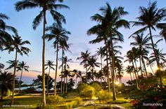 Surroundings @ Shantaa Resort Koh Kood (Thailand)