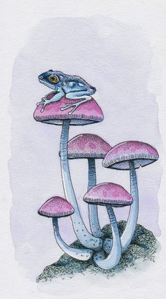 A watercoloured Inktober offering. fineliner and watercolour on illustration board. Frog and Mushrooms Mushroom Drawing, Mushroom Art, Dessin Old School, Fuchs Illustration, Mushroom Tattoos, Trippy Drawings, Frog Art, Hippie Art, Psychedelic Art