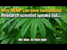 Dr. Coldwell Says Hemp Cures Cancer - YouTube