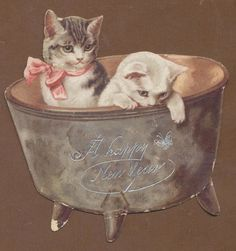 C10145 Bright Victorian Die Cut New Year Card: Cats in Pot. Helena Maguire.