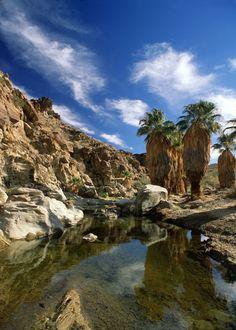 57 Best Missing Home Coachella Valley Images Coachella