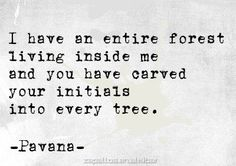 I have an entire forest living inside me and You have carved your initials into every -single- tree. ~ Pavana
