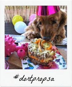 Easy dog birthday cake