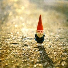 Bachelor Gnomie is waiting to meet all the single Gnomie girls that will pass by going to church.