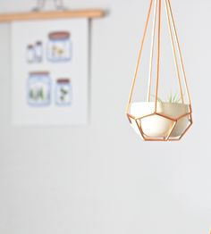 Love this! :: Pentagon Himmeli Hanging Planter