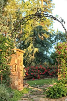 stone arches for climbing roses | Climbing here on another wrought iron arch is Kordes climbing rose ...