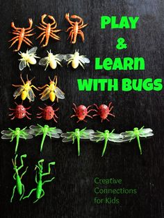 Bugs - graphing, counting, sorting  and more! Bug sensory play and bug ring too