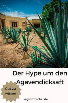 Der Hype um den Agavendicksaft: Wie gesund ist er tatsächlich? Foodblogger, Plants, No Sugar Diet, Good To Know, Vegane Rezepte, German, Health, Plant, Planets
